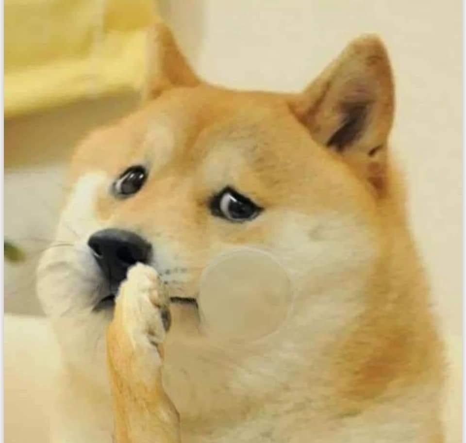Shy Doggo-Doggo meme templates