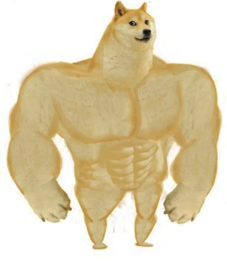 Body Builder Doggo-Doggo meme templates