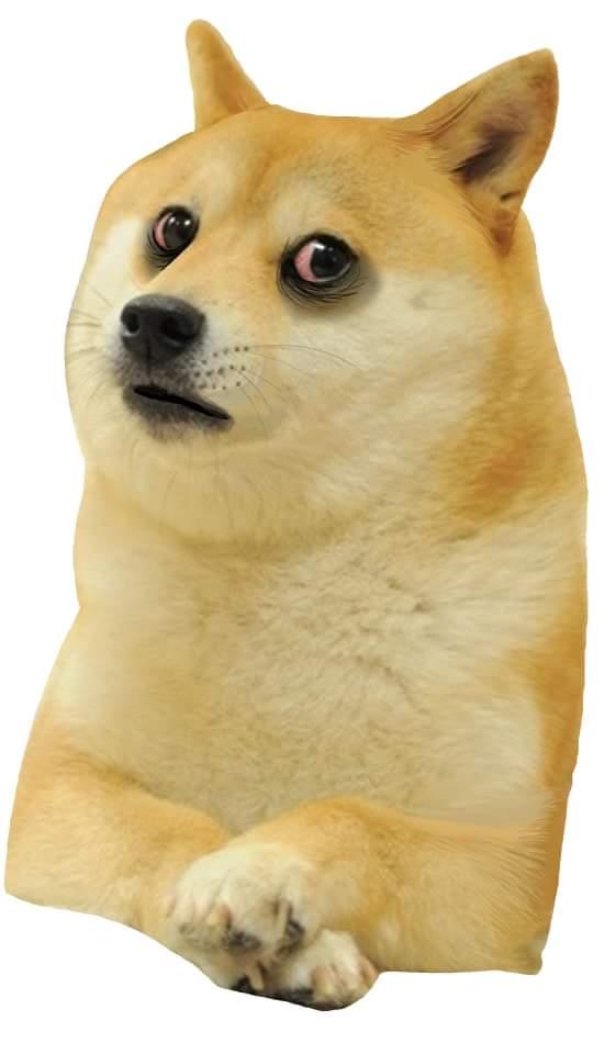 Disturbed sad Doggo-Doggo meme templates